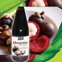 MANGOSTAN Suc Natural Bio cu Rodie 330ml